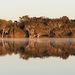 Lake Ainsworth thumbnail